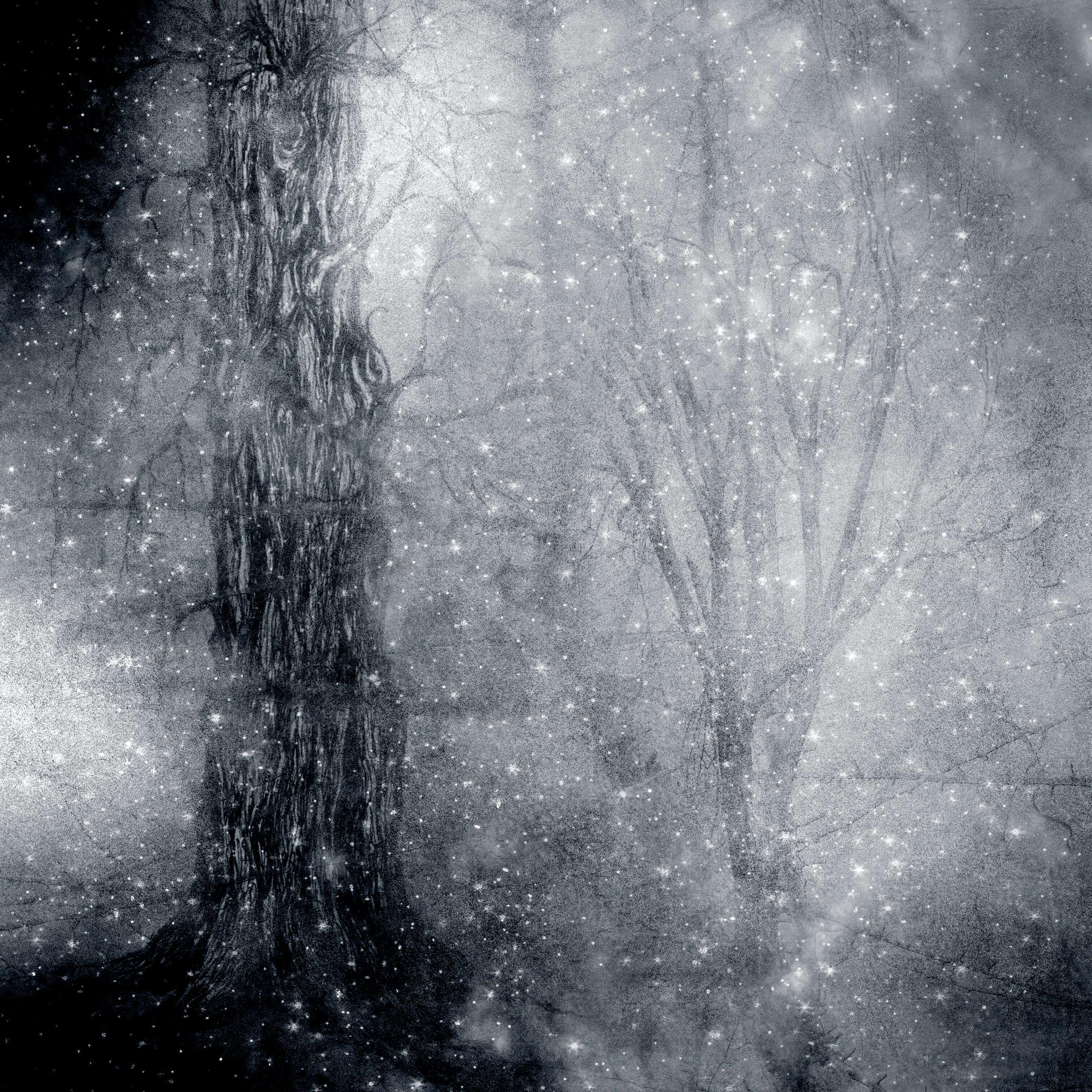 Obliivon album art